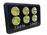 LED Прожектор ARENA 300W 5000K IP65 MEGALIGHT